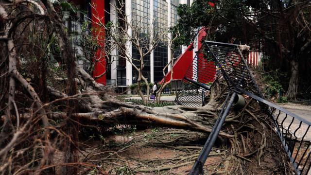 As imagens da devastação causada pelo tufão Hato