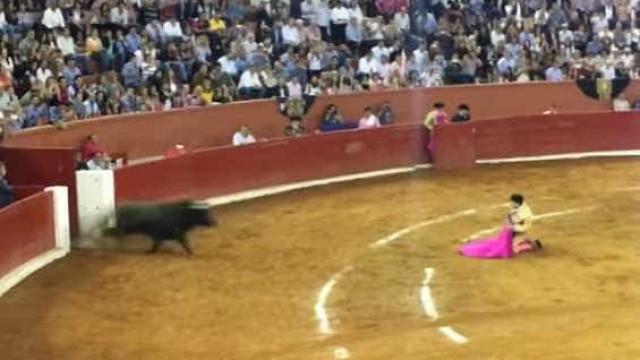 Toureiro Sérgio Flores apanhado e arrastado por touro em arena no México