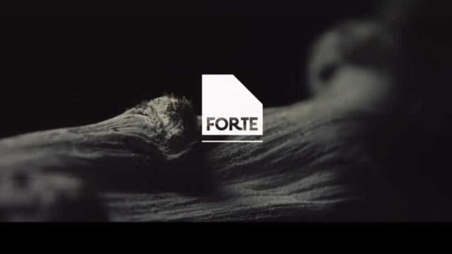 É fã do Festival Forte? Edição de 2018 está em risco