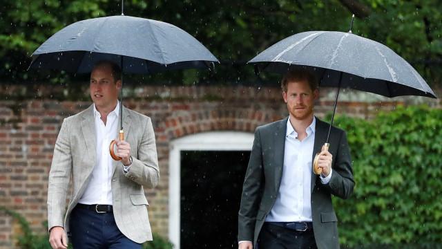 William e Harry homenageiam mãe com visita ao jardim em sua memória