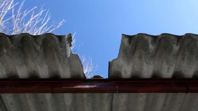 """Prazo para retirar amianto de empresas é """"curto"""", diz Quercus"""
