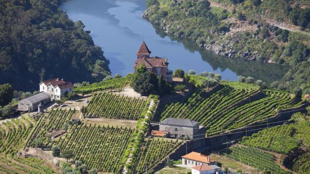 'Douro à volta do mundo' ajudou a abrir o interior a novos mercados