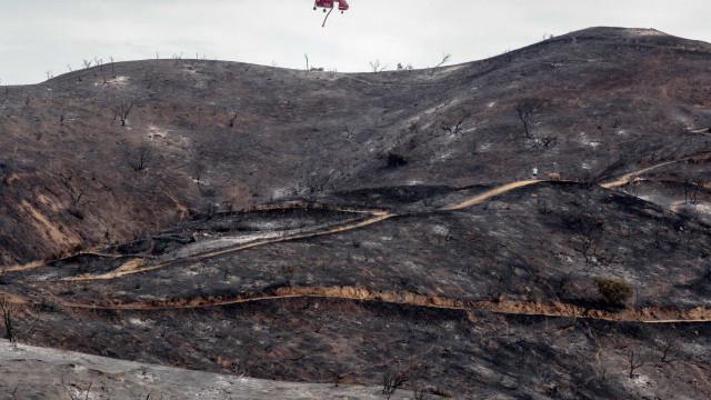 Incendiário reincidente condenado a pena suspensa no Tribunal de Aveiro