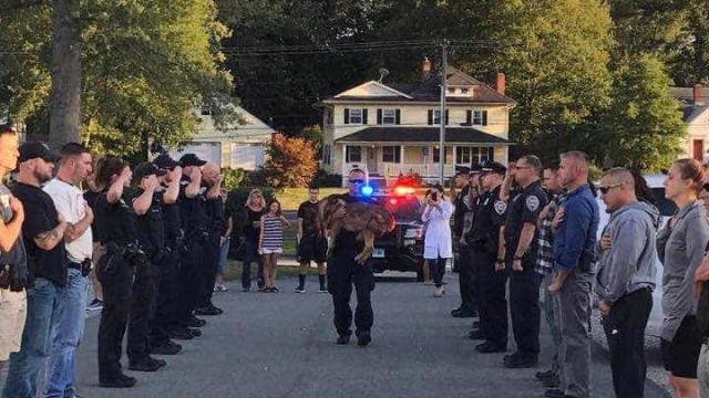 Cão polícia recebe saudação pela última vez antes de ser abatido