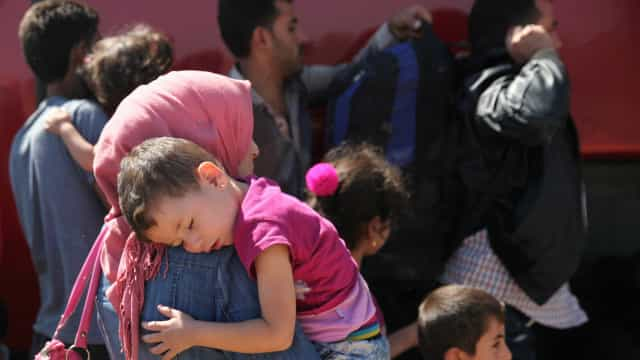 Fundação de Miranda do Corvo lamenta que refugiados resistam à autonomia