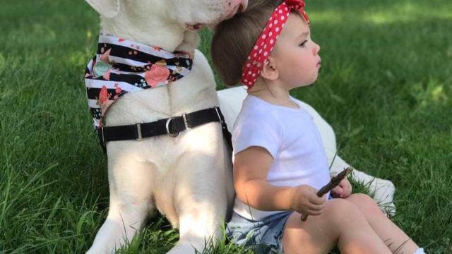 Jennie e a amizade inseparável com Echo, a sua cadelinha surda