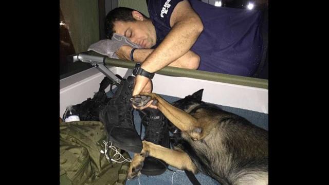 Polícia segura mão do companheiro canino durante fucarão Irma