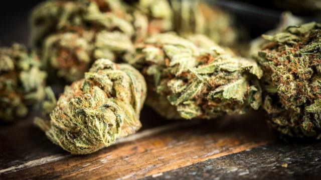 Jovem de 23 anos detido na posse de quase cinco mil doses de haxixe