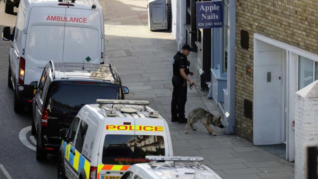 Há pelo menos 22 feridos na sequência de ato terrorista em Londres