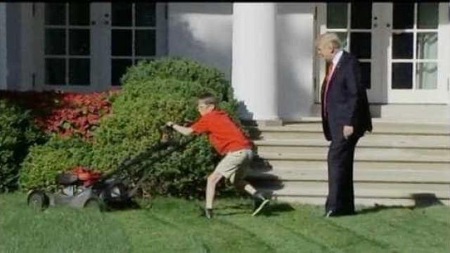 Jovem quis cortar a relva da Casa Branca. Trump aceitou e foi ignorado