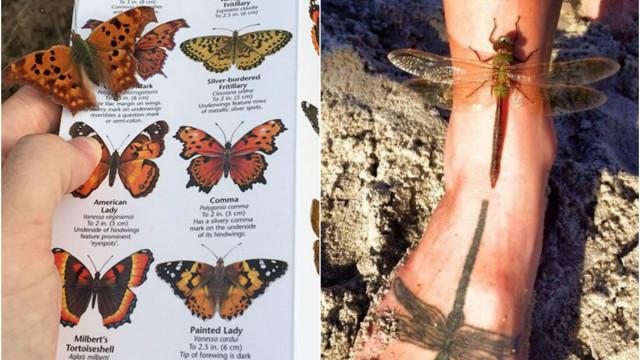 Deixe-se surpreender por estas imagens de coincidências incríveis