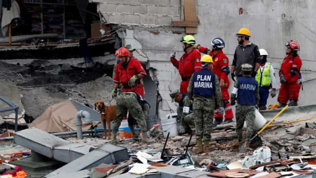 México/Sismo: Pelo menos 245 e mais de dois mil feridos