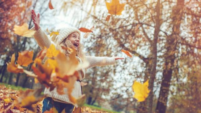 Olá, outono. Vamos fortalecer o sistema imunitário?