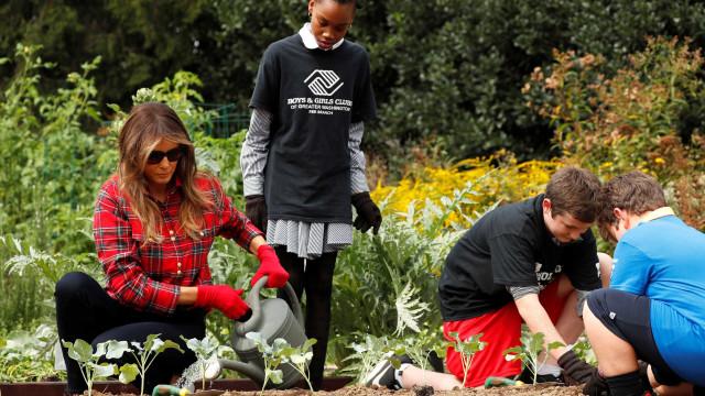 Melania na horta da Casa Branca a dar continuidade à tradição de Michelle