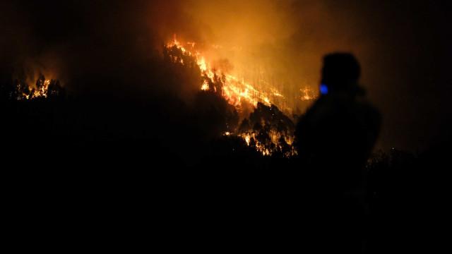 Detido presumível autor de fogo que deflagrou em Vale de Cambra