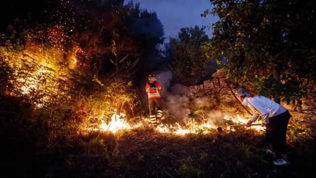 Autarcas do PSD querem fundo para apoiar concelhos afetados por incêndios