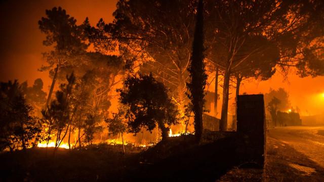 Casas a arder em Aveiro. População está desidratada e sem ajuda