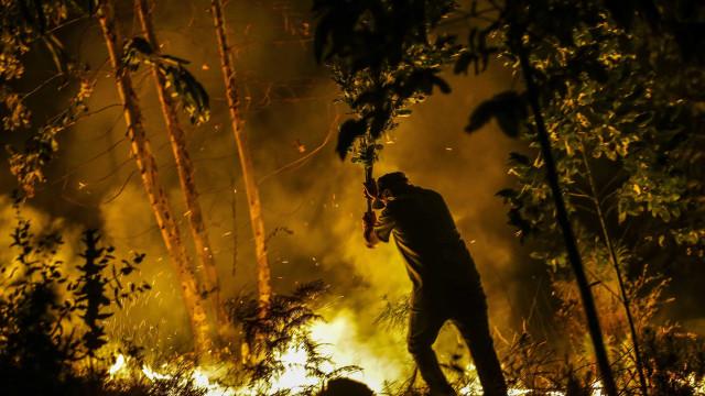 Novo balanço: Número de mortos dos incêndios sobe para 37