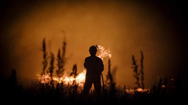 Cerca de 50 operacionais combatem incêndio em São Pedro da Cova