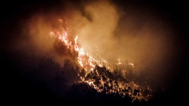 """""""Um país devastado por incêndios"""". Somos outra vez manchete lá fora"""