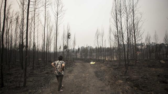 Comissão Técnica entregou relatório de fogos de outubro no Parlamento
