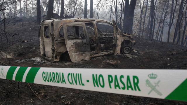 Galiza: Imagem cortante de um cão após fogos emocionou os espanhóis