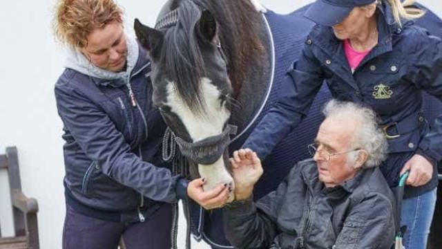 Cumprido desejo final de doente terminal de se reencontrar com cavalo