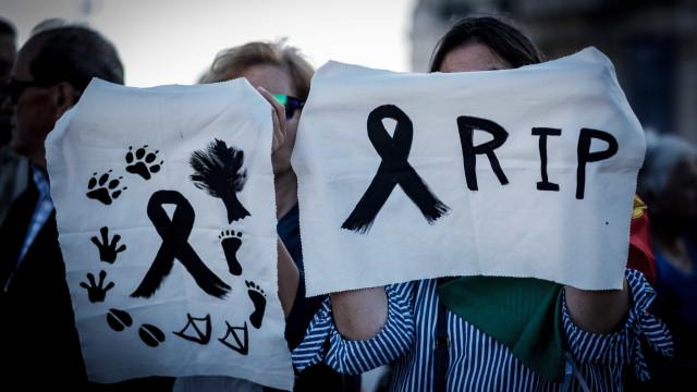Emoção, protesto e homenagem. 'Portugal contra os incêndios' em imagens