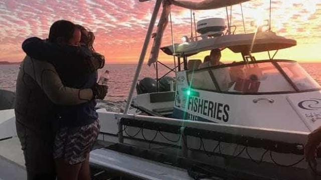 Mergulhador britânico nadou vários quilómetros para fugir a tubarão