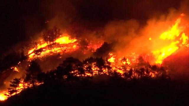 GNR deteve sete incendiários na última semana