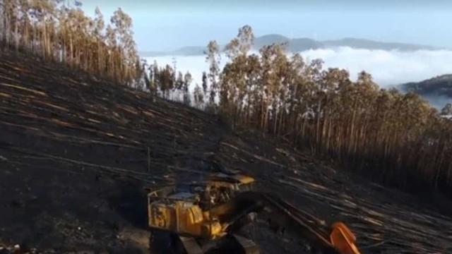 Drone capta realidade negra após fogos em Castelo de Paiva
