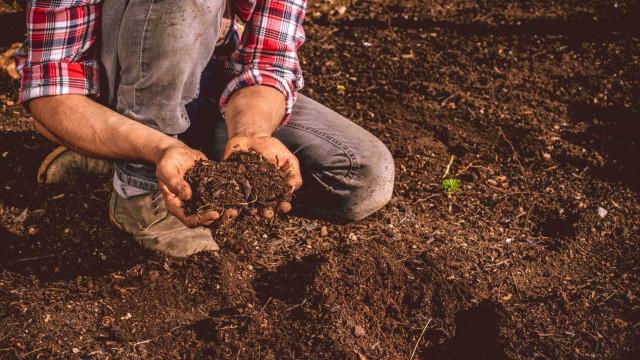 Governo contratou mil jovens agricultores num investimento de 356 milhões