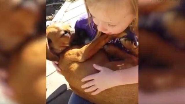 Menina canta música de embalar a cão adotado
