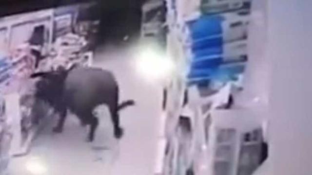Búfalo abalroa mulher grávida num supermercado chinês