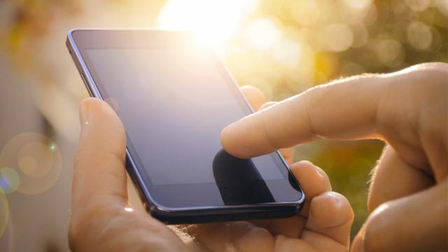 Aplicação de telemóvel ajuda a conhecer flora do parque de Aveiro