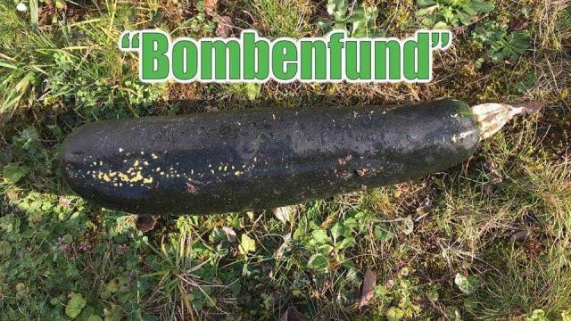 Pensava ter encontrado bomba da II Guerra Mundial mas era só uma curgete