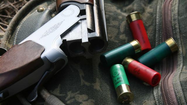 Dez homens detidos por caçarem durante a noite