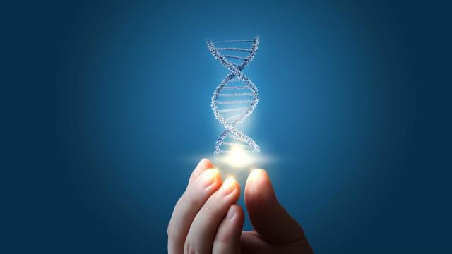 Cancro do pâncreas. Sobrevivência pode estar nas 'mãos' de quatro genes