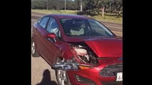 Cria música ao som da (insuportável) buzina do carro após acidente
