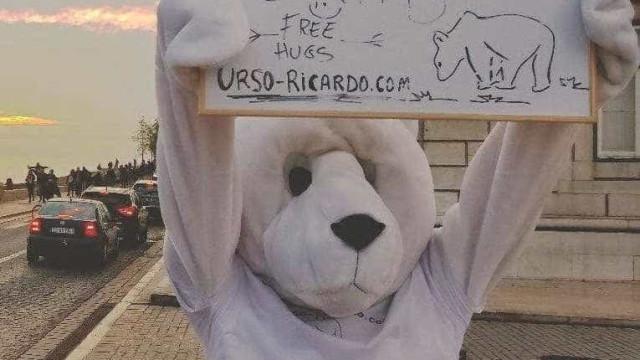 """Entre """"desassossego"""" e """"inquietação"""" nasceu um Urso. Levamo-lo ao Ártico?"""