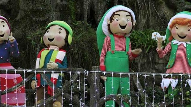 Visitas a parque natalício Perlim aumentam procura cultural