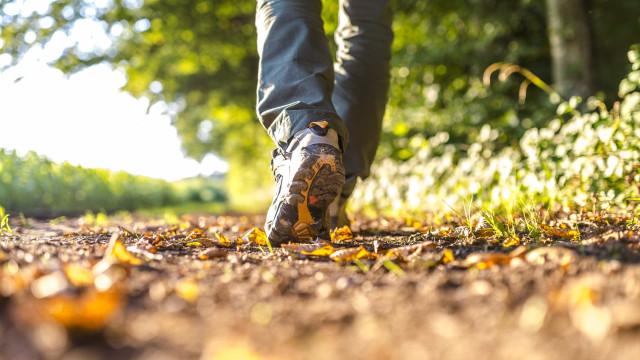 Conhecer o Gerês a andar. Mais de 100 caminhadas estão agendadas