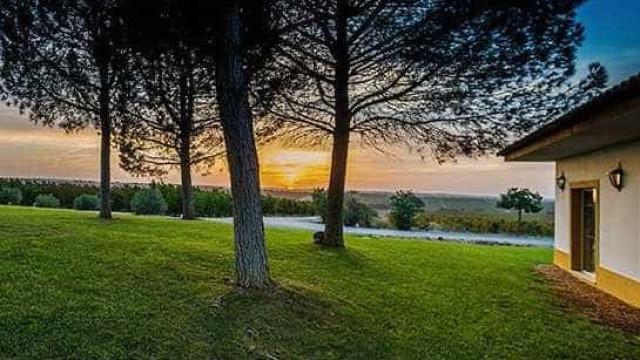 Vila Galé investe mais 4 milhões em projeto de agroturismo no Alentejo