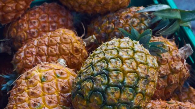 Apreendidos 745 kg de cocaína dentro de ananases em Portugal e Espanha