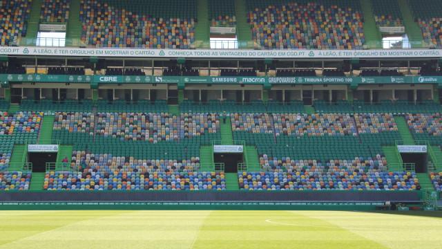 Há uma sócia do Sporting a leiloar um lugar Leão VIP em Alvalade