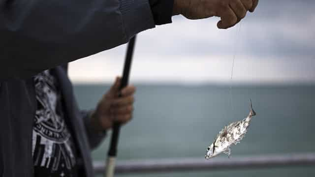 Japão repatria oito pescadores norte-coreanos