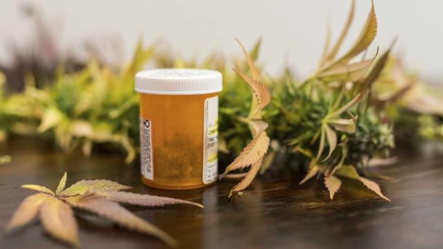 Farmacêuticos contra uso da canábis para fins medicinais