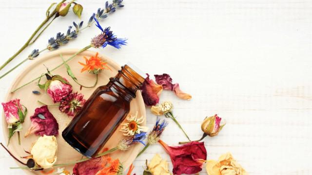 Guia prático para se render à moda dos óleos essenciais