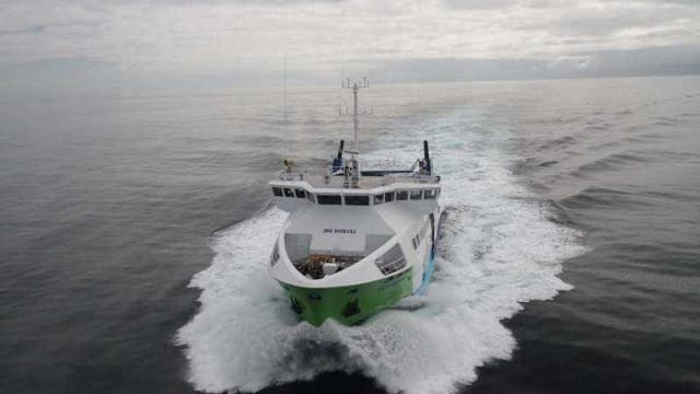 """Madalena: Barco encalhado tem de sair """"até por razões psicológicas"""""""