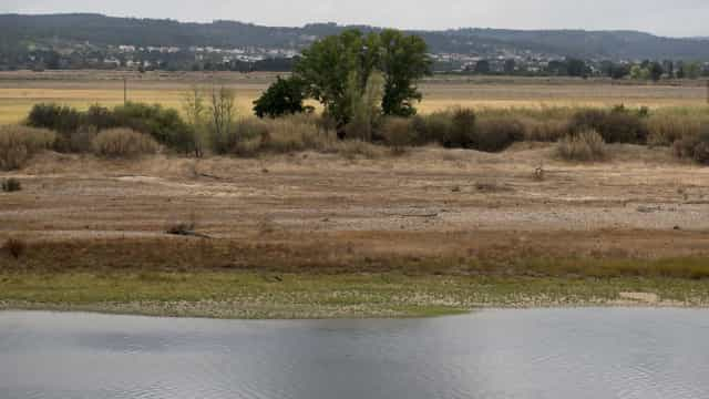 Cientista defende que falta de água é o principal problema do rio Tejo
